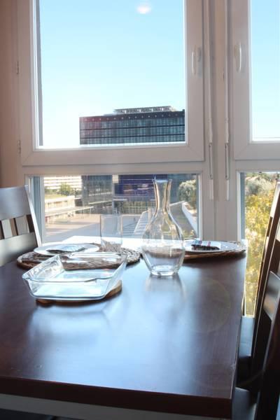 vue sur Montpellier location appartement court séjour