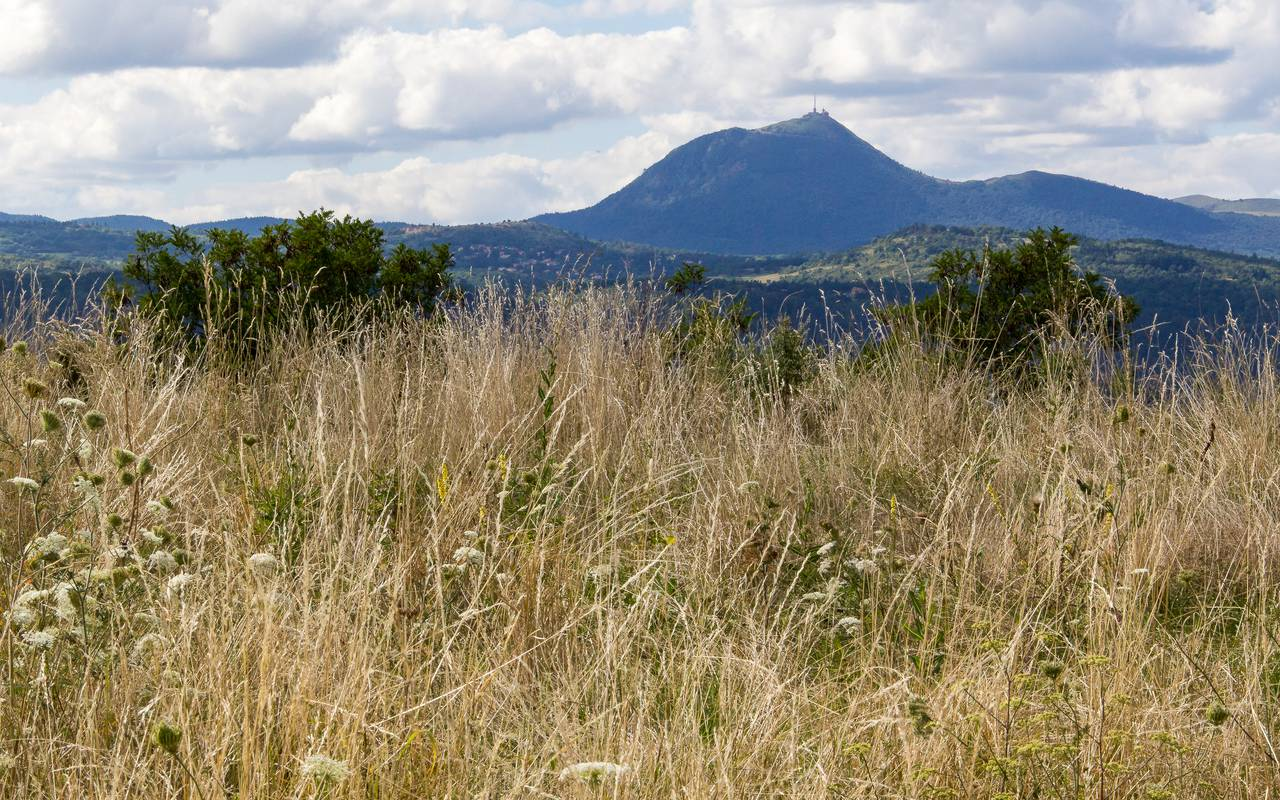 Plateau de Gergovie